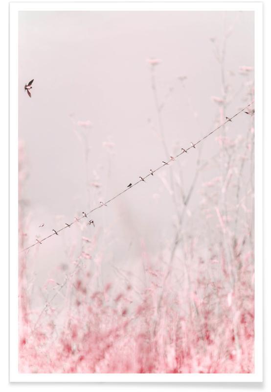 , Ballet Slipper Pink poster