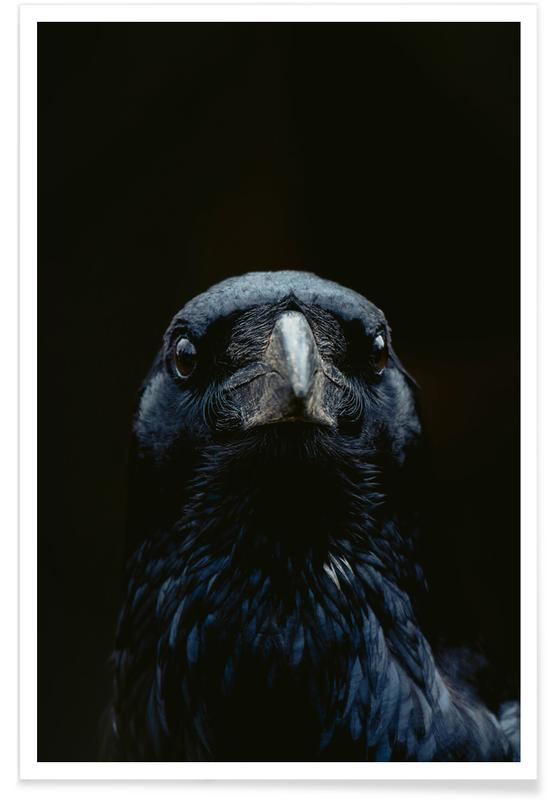 , The Raven Poster