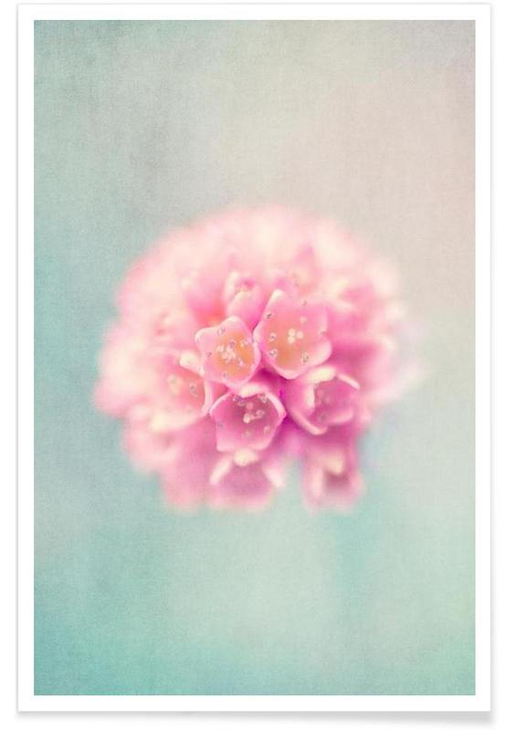 , baby pink affiche