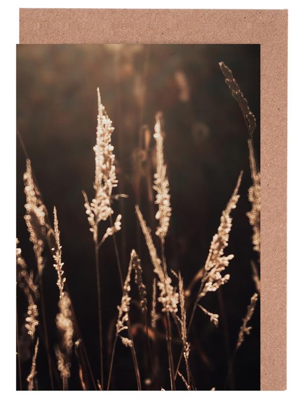 Sonnenuntergänge, Golden Light 2 -Grußkarten-Set