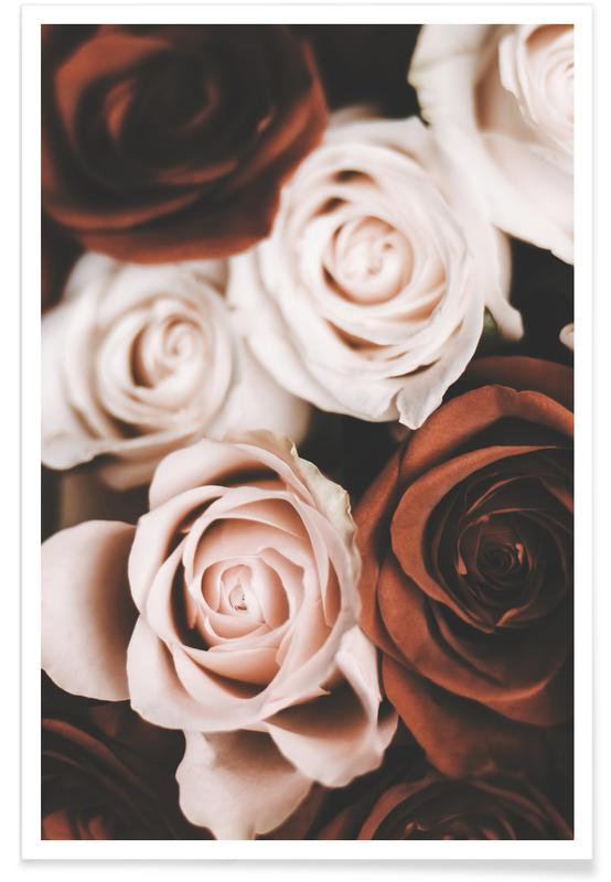 Roses, Mocca And Cream Roses affiche