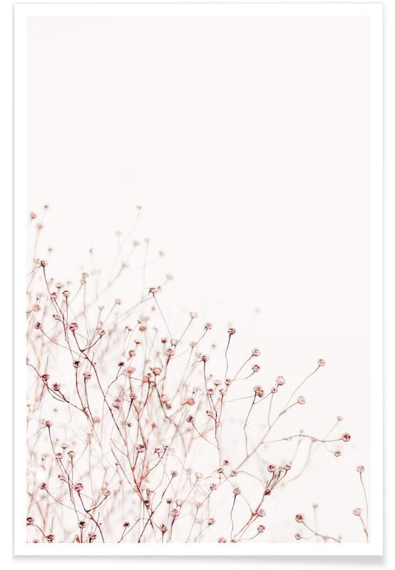 , Wild Flowers affiche