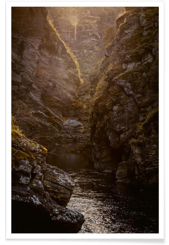 Arbres, Montagnes, Forêts, Feuilles & Plantes, Golden Light affiche
