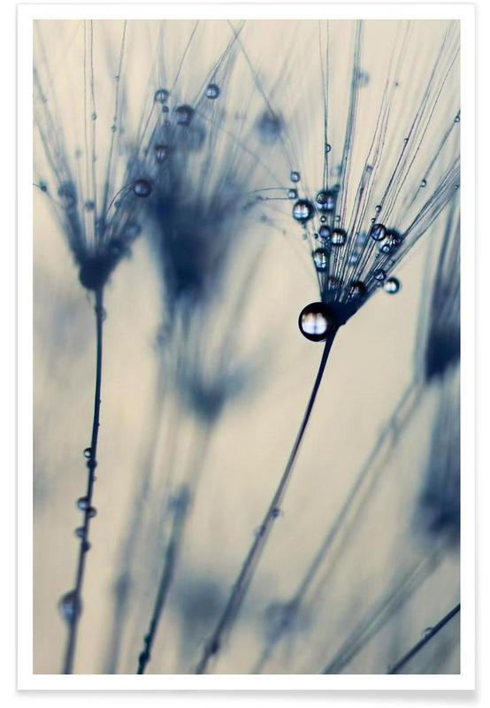 , droplets of moody blues affiche