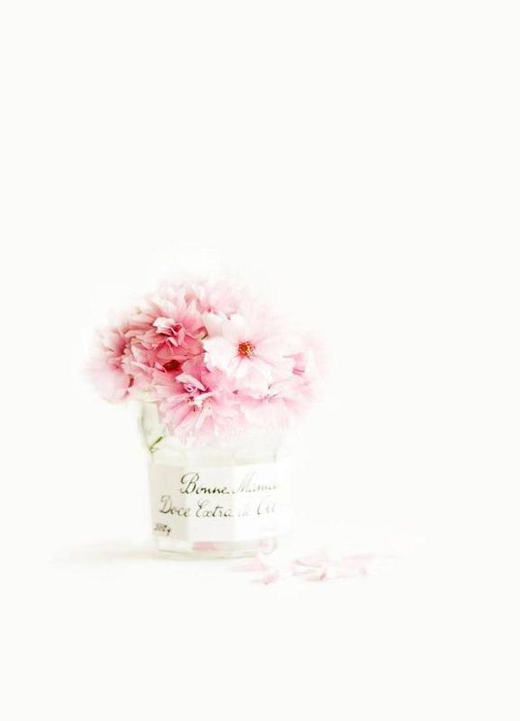 pink blossoms -Leinwandbild