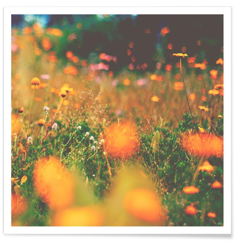 sweet summer -Poster