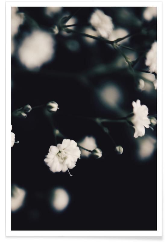 Zwart en wit, Babys Breath poster