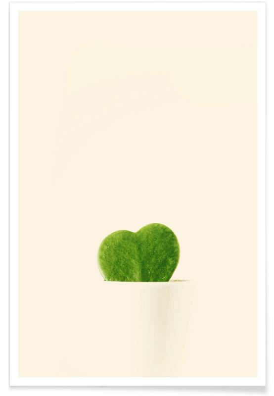 Liebe & Jahrestage, Kaktus, Cactus Heart -Poster