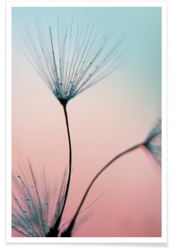 , Sprinkles Of Love poster