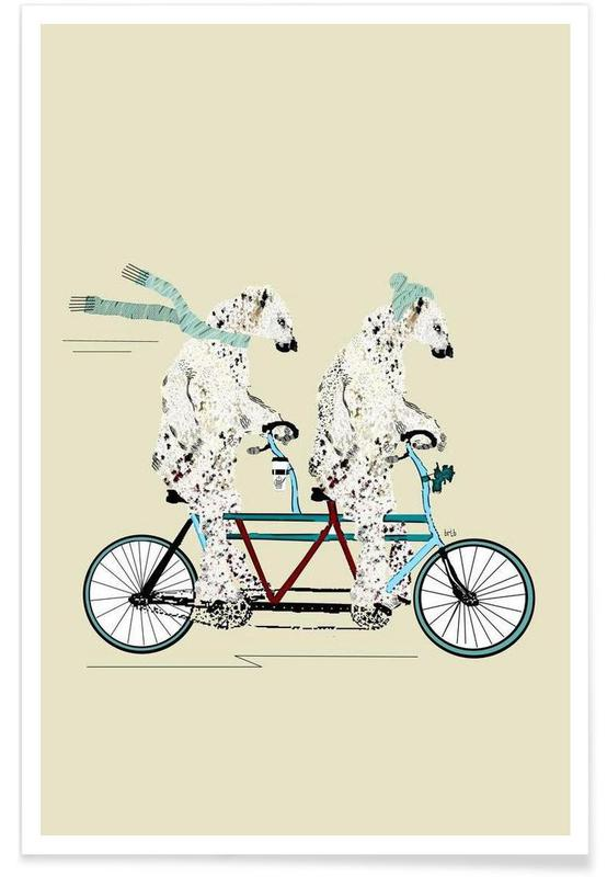 Ours, polar bears lets tandem affiche