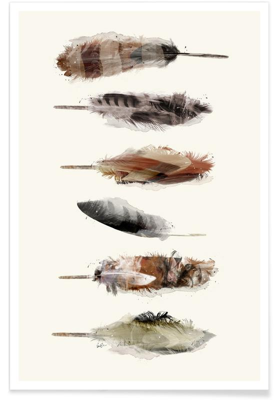 Veren, Free Fall Feathers poster