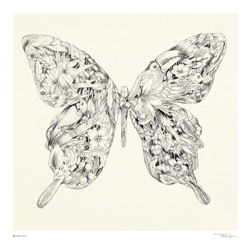 Butterfly alu dibond