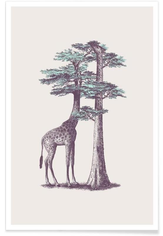 Girafes, Fata Morgana affiche