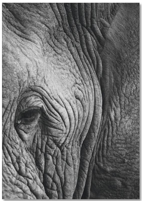 Nambithi Elephant 01 Notebook
