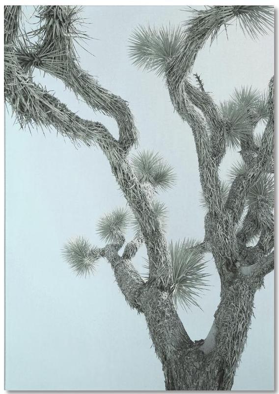 Arbres, Joshua Tree bloc-notes