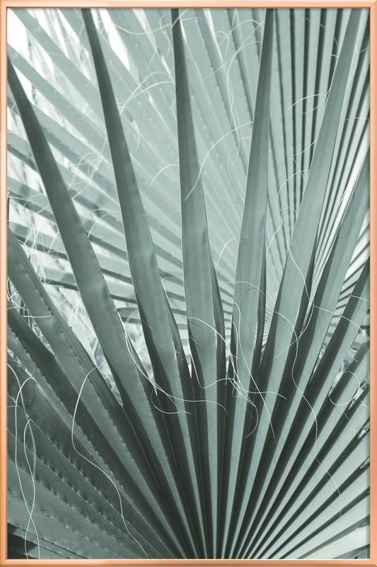 Bot Gardens -Poster im Alurahmen
