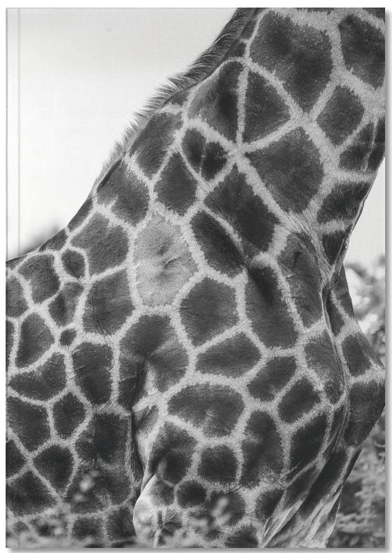 Giraph detail Notebook