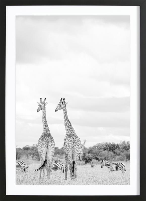 Giraph couple Framed Print