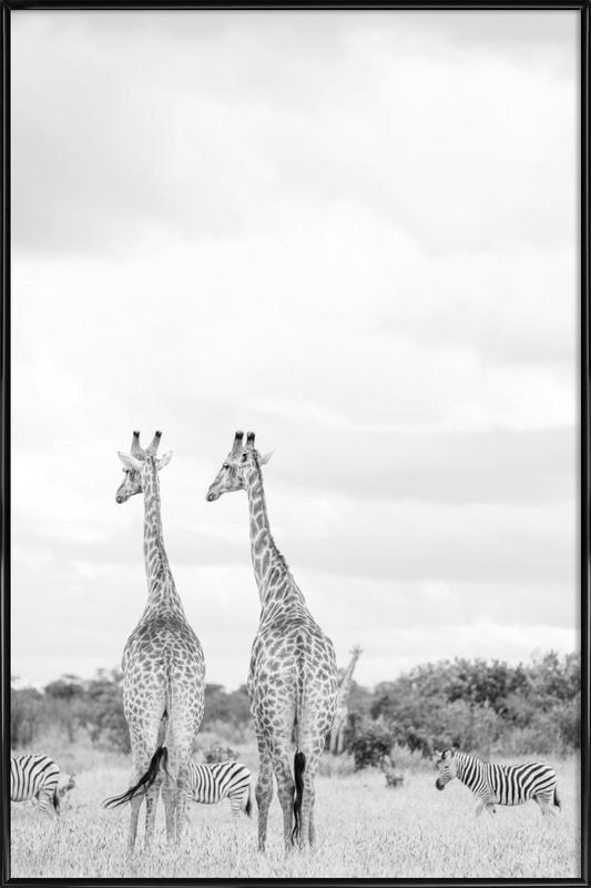Giraph couple Framed Poster