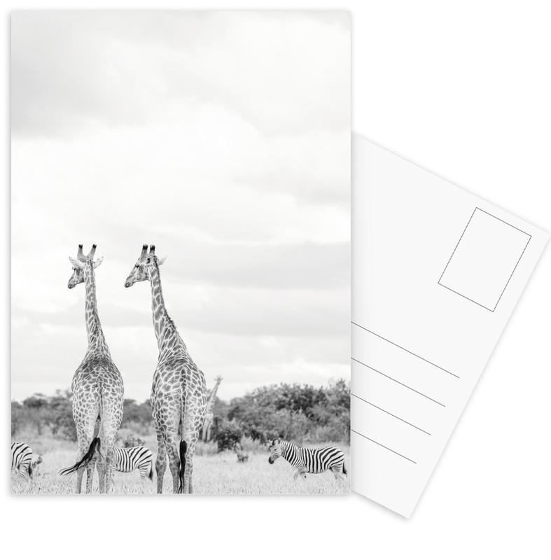 Giraph couple Postcard Set