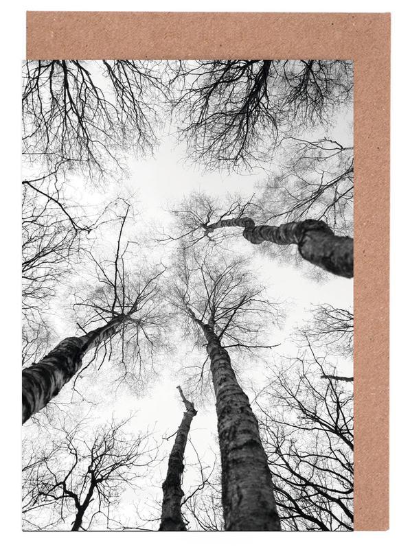 Wälder, Bäume, Schwarz & Weiß, Everglades -Grußkarten-Set
