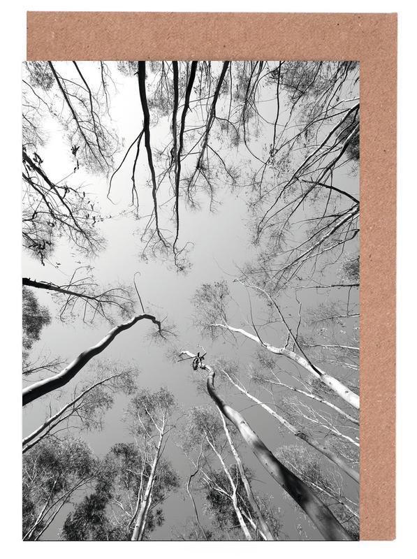Wälder, Bäume, Schwarz & Weiß, Plantations -Grußkarten-Set
