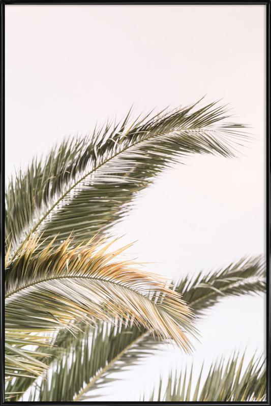 Oasis Palm 3 ingelijste poster