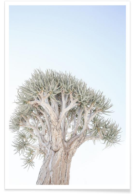 Arbres, Quiver Tree affiche