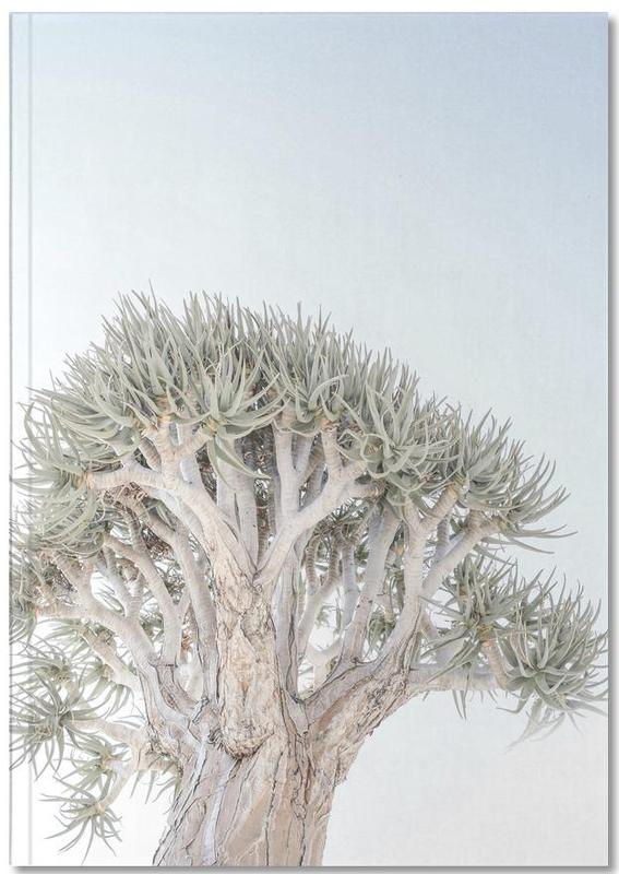 Quiver Tree Notebook