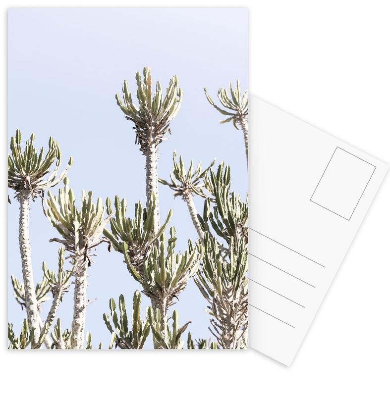 Cactussen, Tankwa Euphorbia 2 ansichtkaartenset