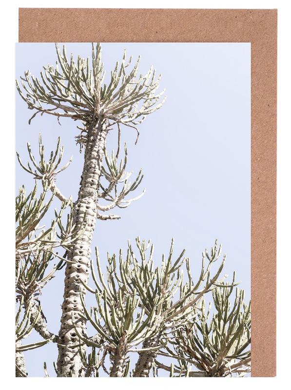 Kaktus, Tankwa Euphorbia 3 -Grußkarten-Set