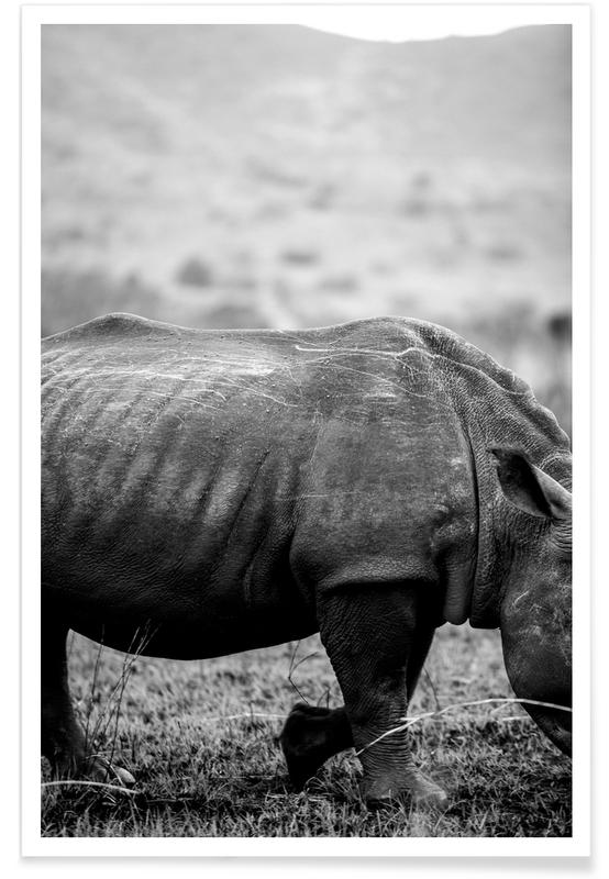 Noir & blanc, Rhinocéros, Black Rhino affiche