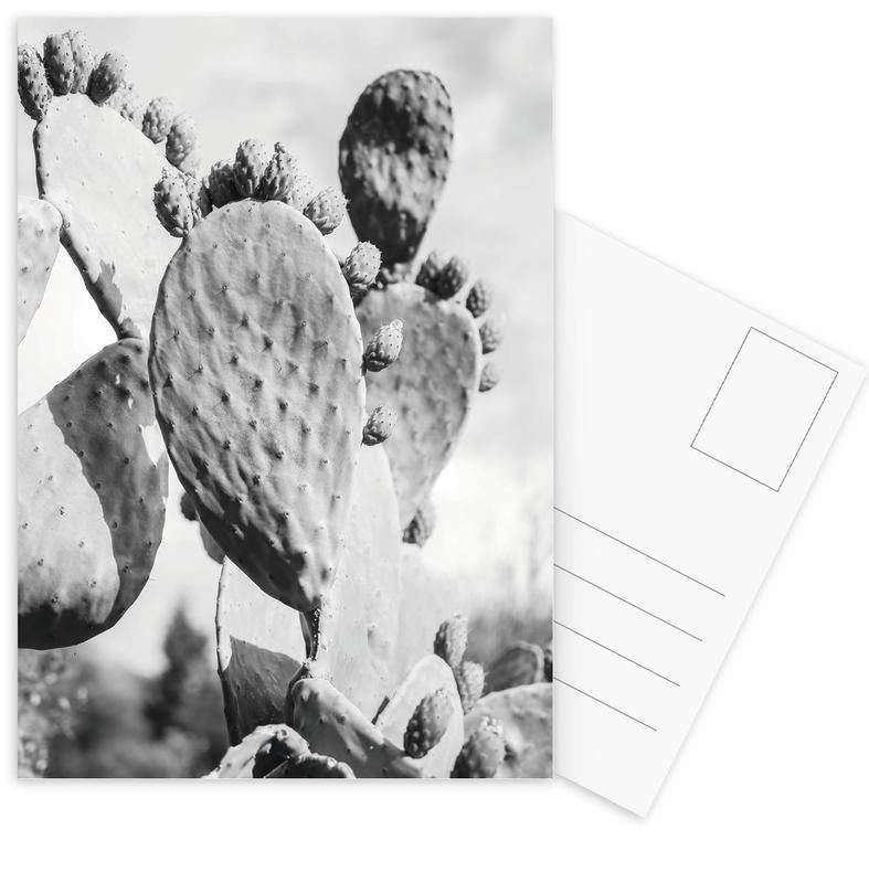 Cacti Cowboy 1 Postcard Set