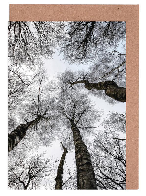 Forest 1 cartes de vœux
