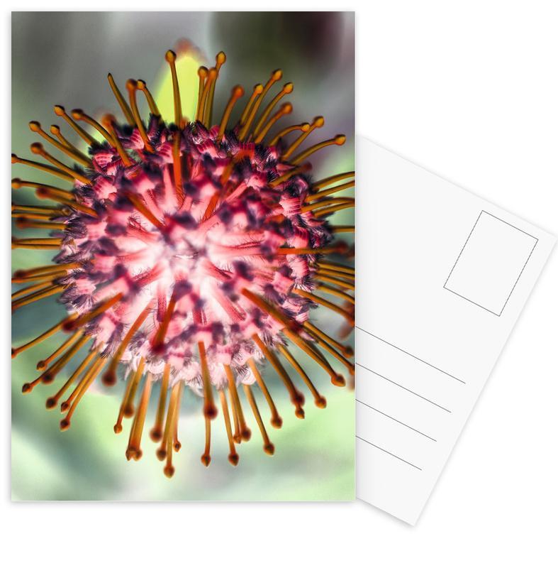 Pin Cushion 1 -Postkartenset