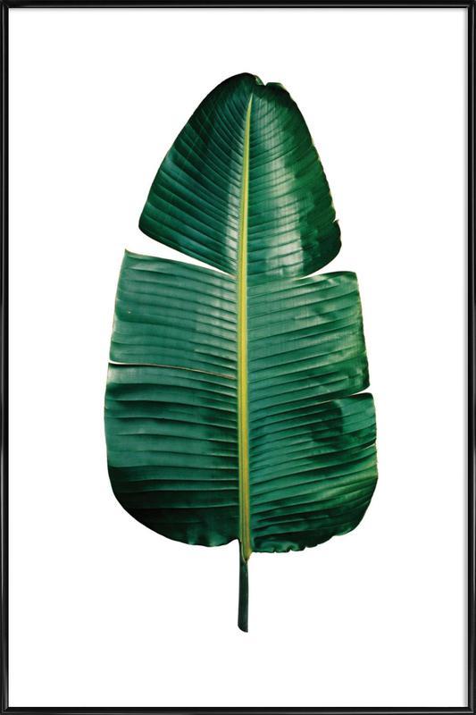Classic Botanical Leaves 09 Framed Poster