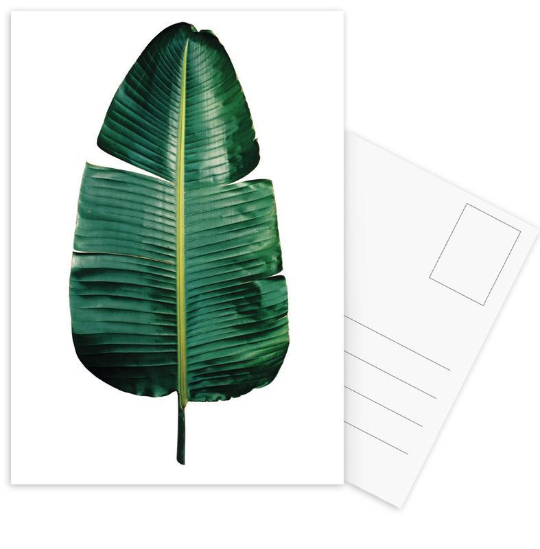 Classic Botanical Leaves 09 Postcard Set