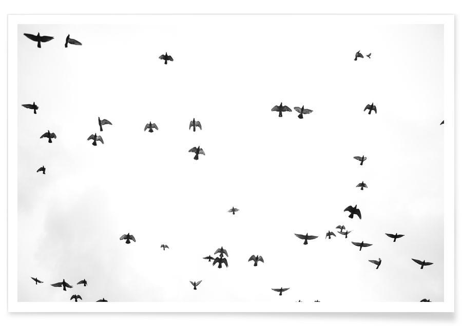 , Flight & Freedom 03 affiche
