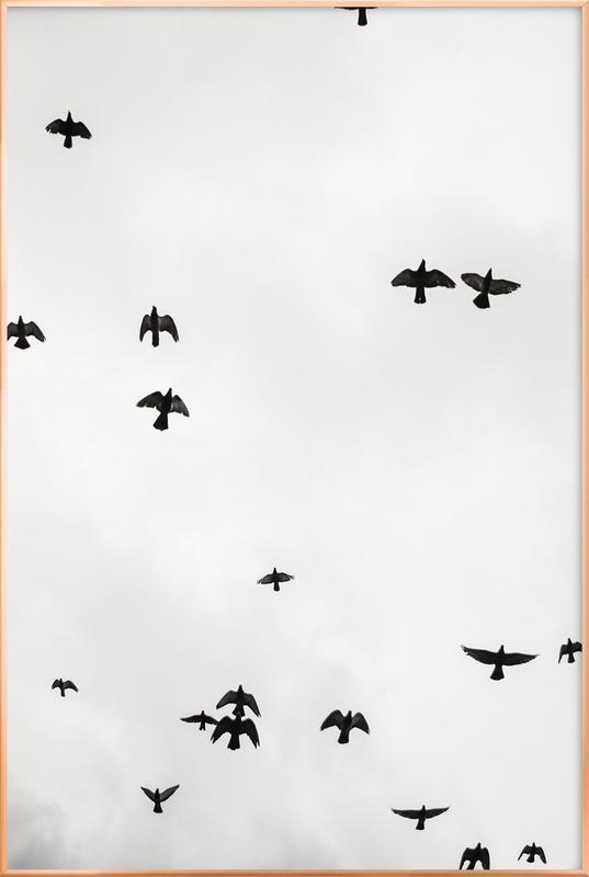 Flight & Freedom 04 Poster in Aluminium Frame