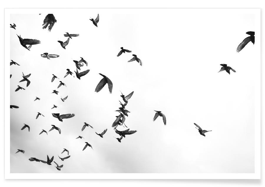Flight & Freedom 05 -Poster