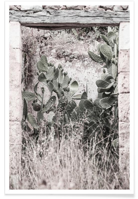Kaktus, Nature Rules -Poster