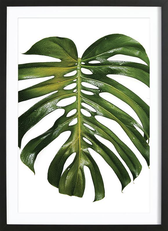 Tropical Heat 011 ingelijste print