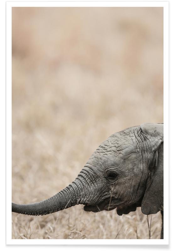Elefanten, Jellybaby -Poster