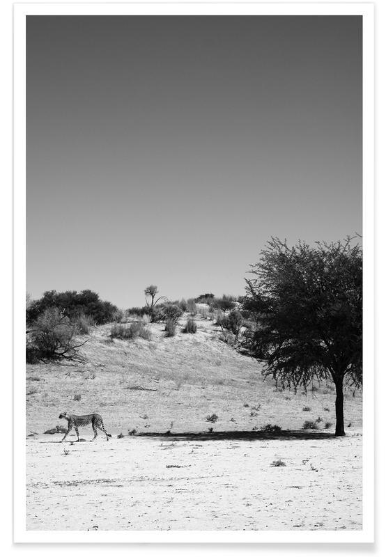 Schwarz & Weiß, Wüsten, Leoparden, Loner -Poster