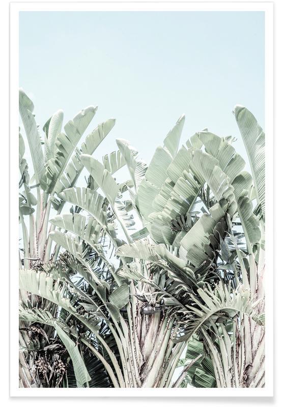 Reizen, Tropicana poster