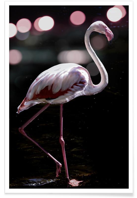 Travel, Dancing Flamingo Poster