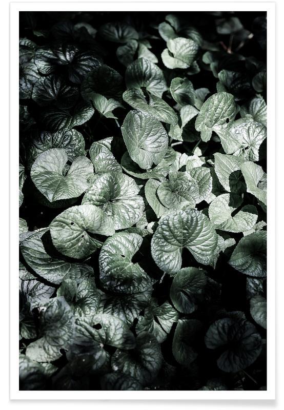 Reise, Forest Floor -Poster
