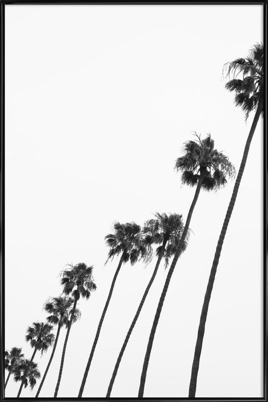 Cali Palms Framed Poster
