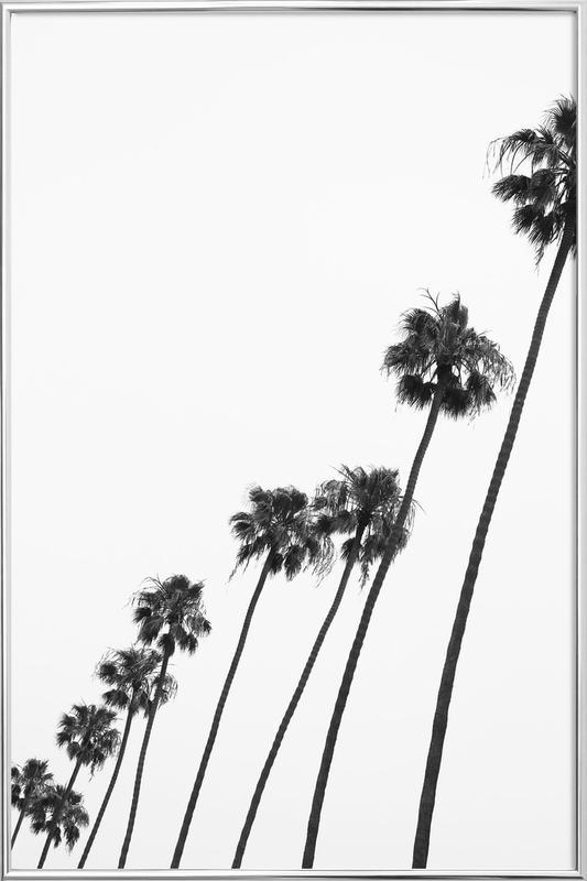 Cali Palms Poster in Aluminium Frame
