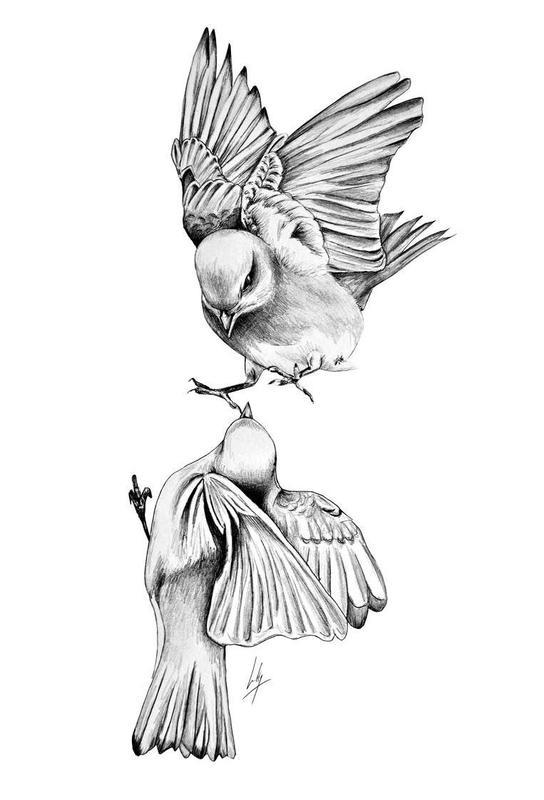 Birds Acrylic Print